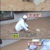 ハナコ? 記録的な集中豪雨で迷子になっていた犬を救助する時、呼びかけた名前(笑)