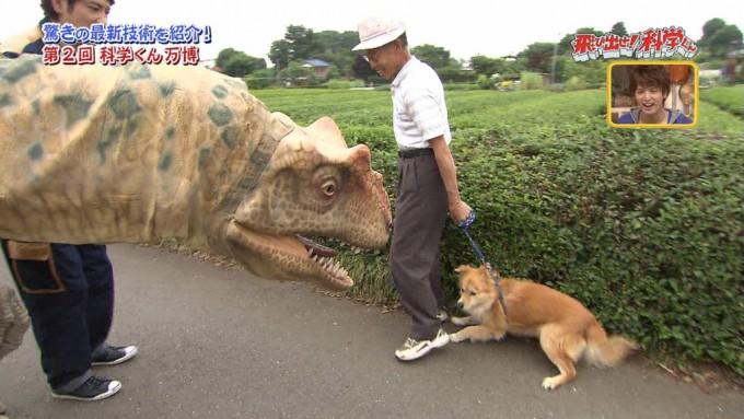 【テレビの犬おもしろ画像】科学の力には勝てない! 散歩中の犬に本物そっくりの恐竜ロボットを近づけたら(笑)animal_0001