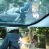 ニヤリ! 車運転中、原付に乗っている人の背中にいたポメラリアンと目が合う(笑)