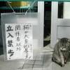 注意! 「猫が大変凶暴です!関係者以外立ち入り禁止!」(笑)