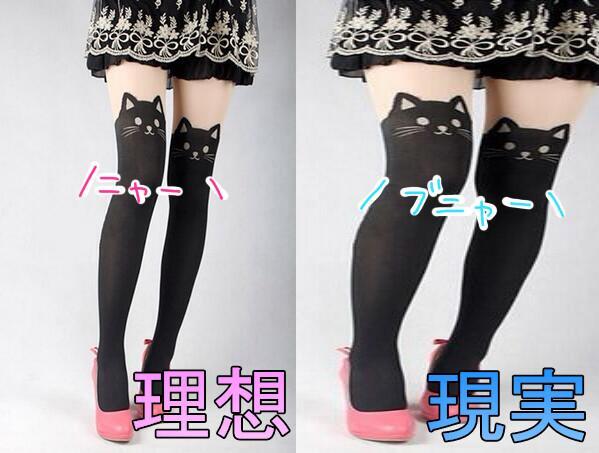 【おもしろ画像】理想と現実! 2匹の猫がかわいいはずなのに…履く人を選ぶ猫タイツ(笑)beauty_0010