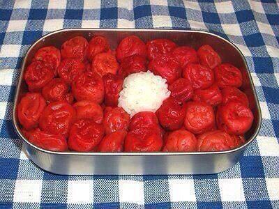 【食べ物おもしろ画像】塩分取り過ぎ! 夫婦げんか翌日の梅干しご飯弁当(笑)food_0017