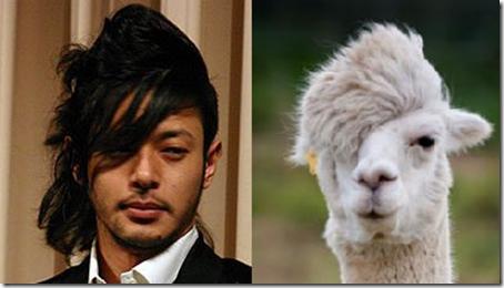 【面白画像】動物ヘア! オダギリジョーの髪型がオシャレというより、アルパカそっくり(笑)iti_0013