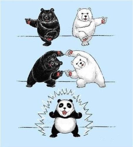 面白画像 フュージョン! 熊と白熊が合体するとパンダになります(笑)animanga_0020