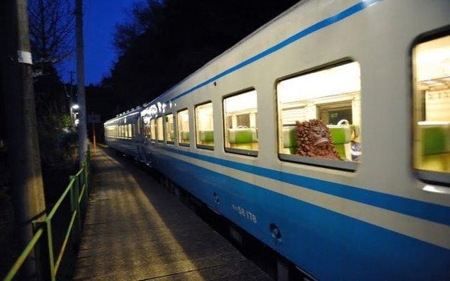 面白画像 夜の電車に『ピグモン』chara_0017