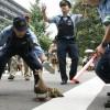 大物! 道を歩く超VIPなファミリーに、警察官たちの警護にも力がはいります(笑)