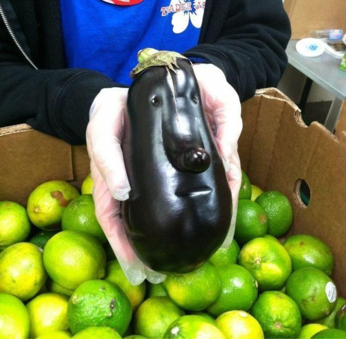 【食べ物おもしろ画像】鼻の長い人の顔のような茄子(笑)food_0024