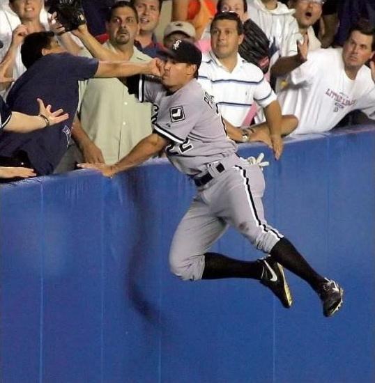 【野球おもしろ画像】野球の試合で観客席に入りそうなボールを取ろうとした選手に訪れた悲劇(笑)