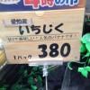 売り切れ! スーパーで売っていた愛知産いちじくが甘くて美味しい(笑)