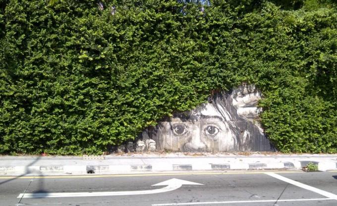 面白画像 壁に描かれた林の中から覗く『進撃の巨人』の巨人イラストが怖すぎます(笑)animanga_0048