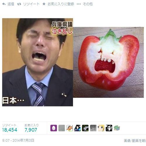 【テレビの食べ物おもしろ画像】泣き乱した野々村竜太郎元議員とパプリカの断面がそっくり(笑)