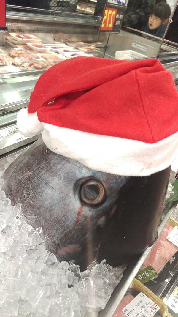 クリスマスおもしろ画像 血の涙! クリスマスにスーパー鮮魚コーナーに飾ってあったマグロ(笑)christmas_0026