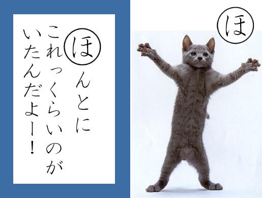 【猫とお正月おもしろ画像】おもしろかわいい! お正月早々『ねこかるた』でほっこりします(笑)newyear_0021