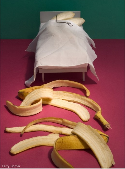 下ネタ面白画像 黄色い皮を脱ぎ捨て、裸で愛し合う2人(笑)hhh_0048