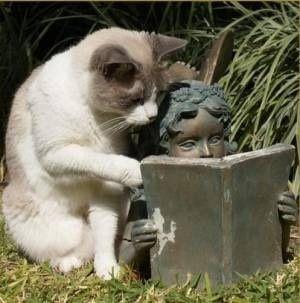 【猫おもしろ画像】読書をしている銅像と一緒になって本を読むおもしろい猫(笑)