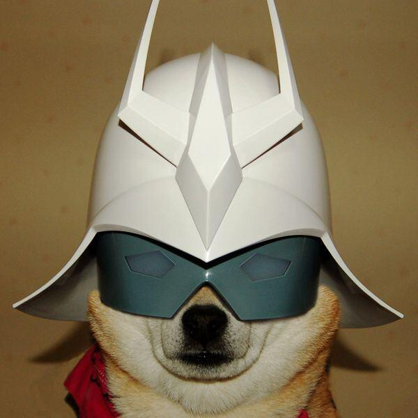 【犬おもしろ画像】ガンダムのシャアに扮する柴犬「シャア犬」がおもしろい(笑)