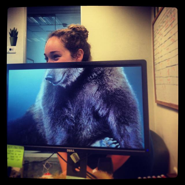 desk safari職場に珍獣? 社内で見かけた犬のカラダをした女性(笑)foreign_0091_06