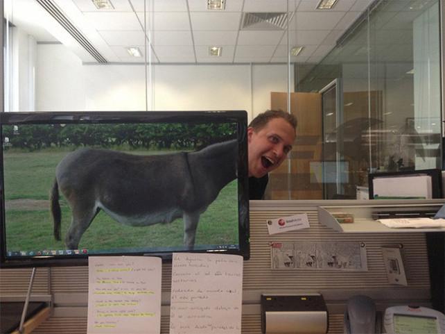 desk safari職場に珍獣? 社内で見かけた犬のカラダをした女性(笑)foreign_0091_07