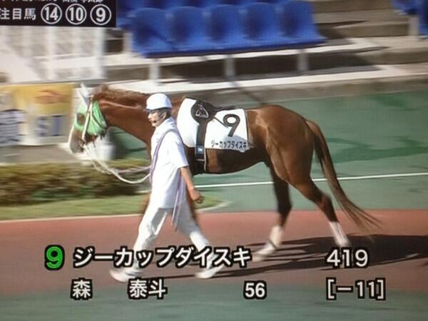 【テレビおもしろ画像】アナウンサーが可哀想! ちょっときわどい競走馬「ジーカップダイスキ」(笑)hhh_0061