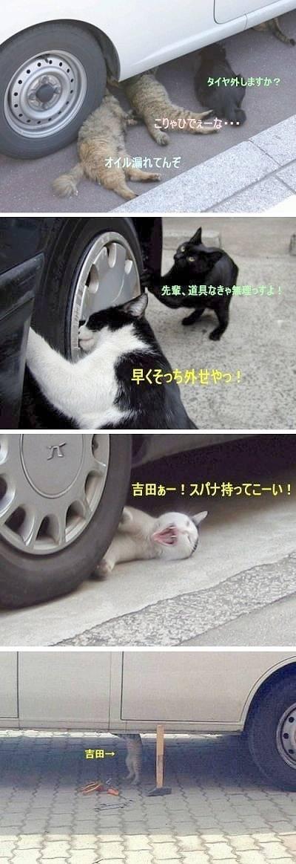 爆笑4コマ! 「吉田ぁー!スパナ持ってこーい!」(笑)cat_0011