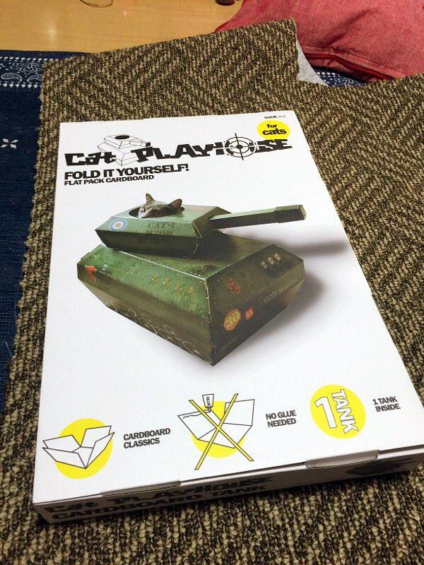とつげきー! ロンドンの猫用戦車に乗車したネコ司令官(笑)cat_0068