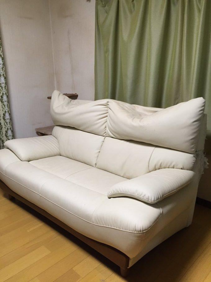 犯人はお前たちか! 家のソファーが凹んだ形になってしまった原因(笑)