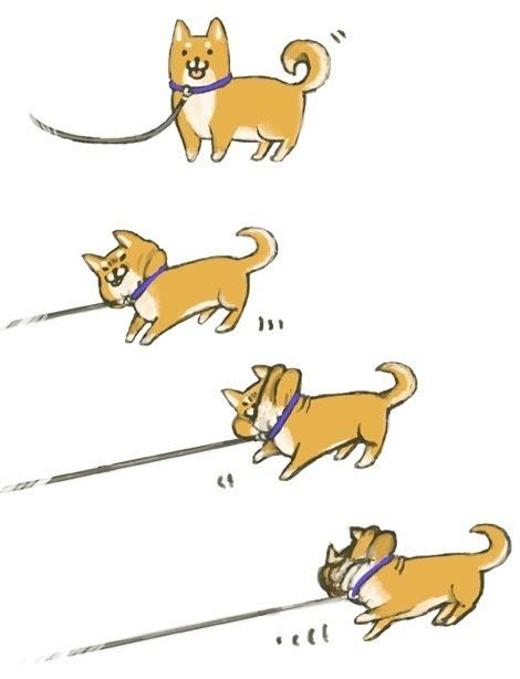 【犬おもしろ画像】家に帰るのを全力で嫌がる柴犬のおもしろいイラスト(笑)