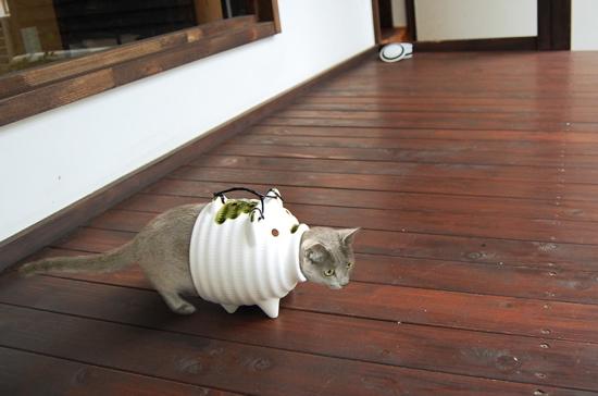 【蚊取り豚と猫おもしろ画像】ネコが蚊取り豚で遊びすぎて蚊取りネコに!cat_0133