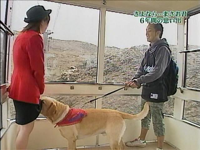こら! 『ペット大集合!ポチたま』旅犬のまさお君、変なところに顔を突っ込むハプニング(笑)hhh_0120