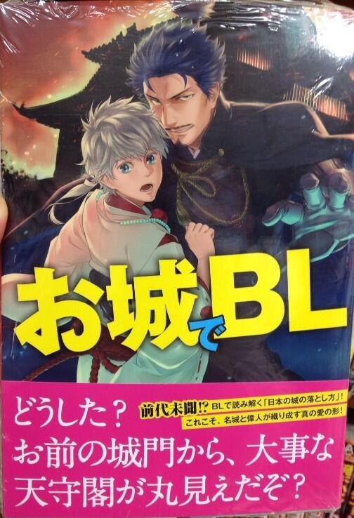 BL新ジャンル! 城攻めを男同士に見立てた書籍『お城でBL』のキャッチコピー(笑)