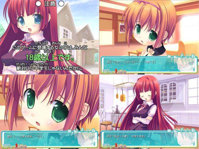 矛盾! 同人ゲーム「私立さくらんぼ小学校」に登場するキャラクターの年齢がおかしい(笑)game_0003