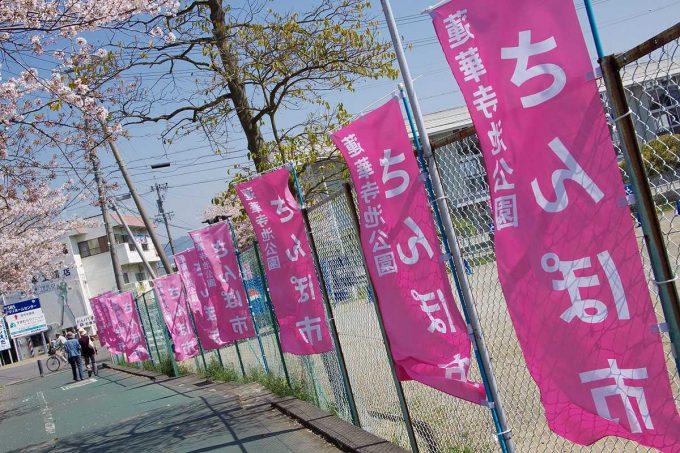 どんな市? 藤枝市の蓮華寺池公園で開かれる「さんぽ市」のぼり旗が逆さになって大変なことに(笑)