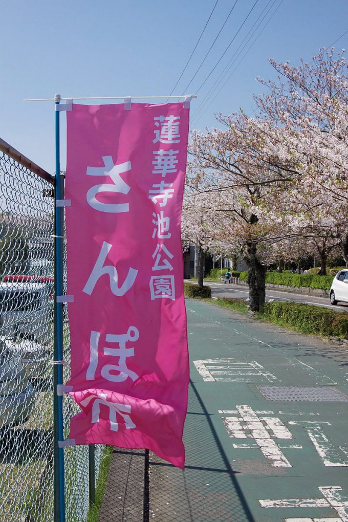 蓮華寺池公園「さんぽ市」ののぼり旗hhh_0109_01