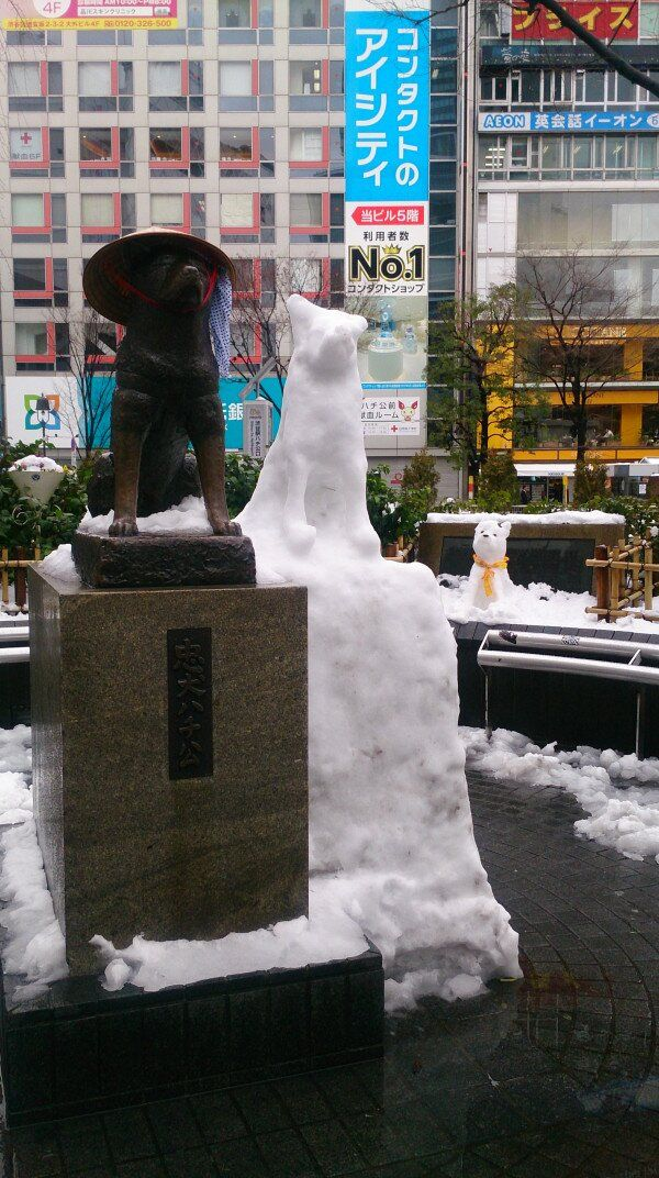 友だちいっぱい! 2014年2月の記録的大雪の日に増殖した渋谷ハチ公笑photo_0022_01
