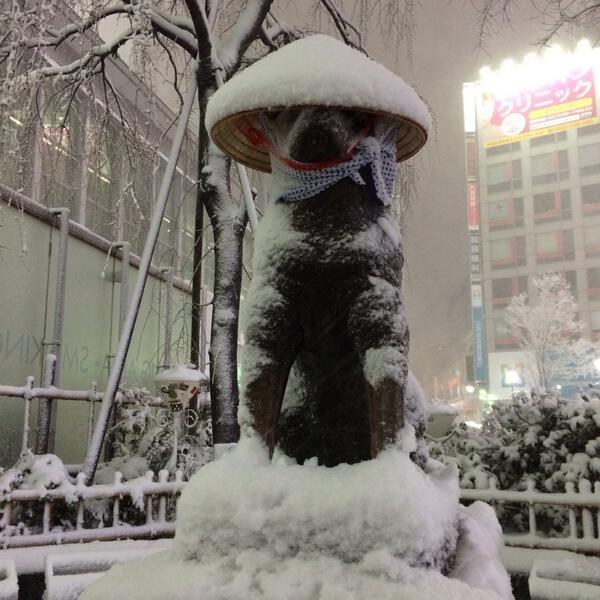 渋谷ハチ公photo_0022_02