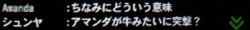 モンスターハンターAmanda(アマンダ)のチャットgame_0002_04