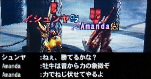 モンスターハンターAmanda(アマンダ)のチャットgame_0002_06