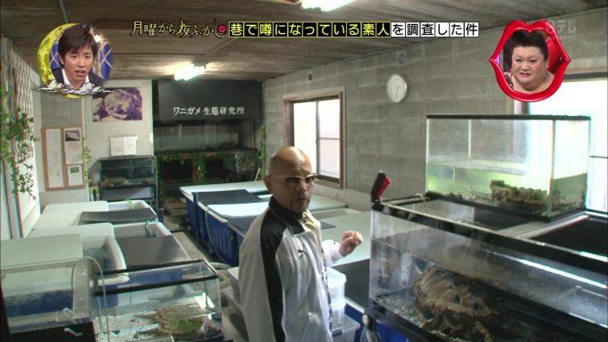 月曜から夜ふかしで紹介されたワニガメ生態研究所