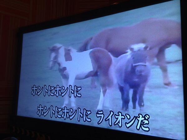 ライオン? カラオケで入れた『富士サファリパークCMソング』の歌詞と映像が違いすぎ(笑)