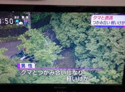 【テレビ珍事件おもしろ画像】強すぎ! クマと遭遇して掴み合いで軽いケガで済んだ男性(笑)
