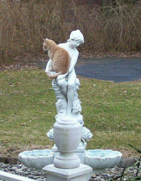 寂しいニャ! 人が恋しくて銅像に抱きかかえられる猫がかわいい(笑)