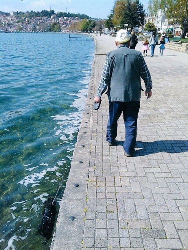 【犬おもしろ画像】海中に犬を散歩させるおもしろいおじいちゃん(笑)