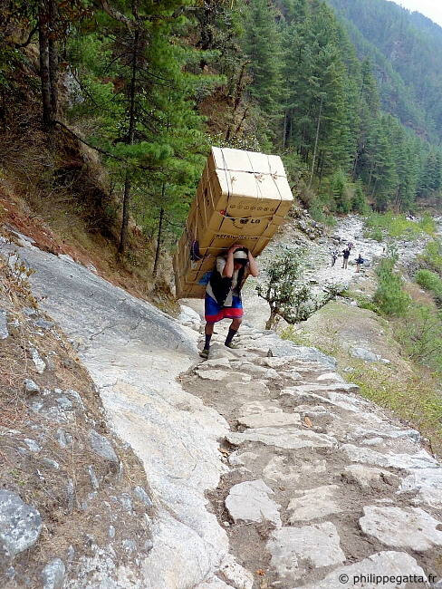 シェルパ(Sherpa)のポーター