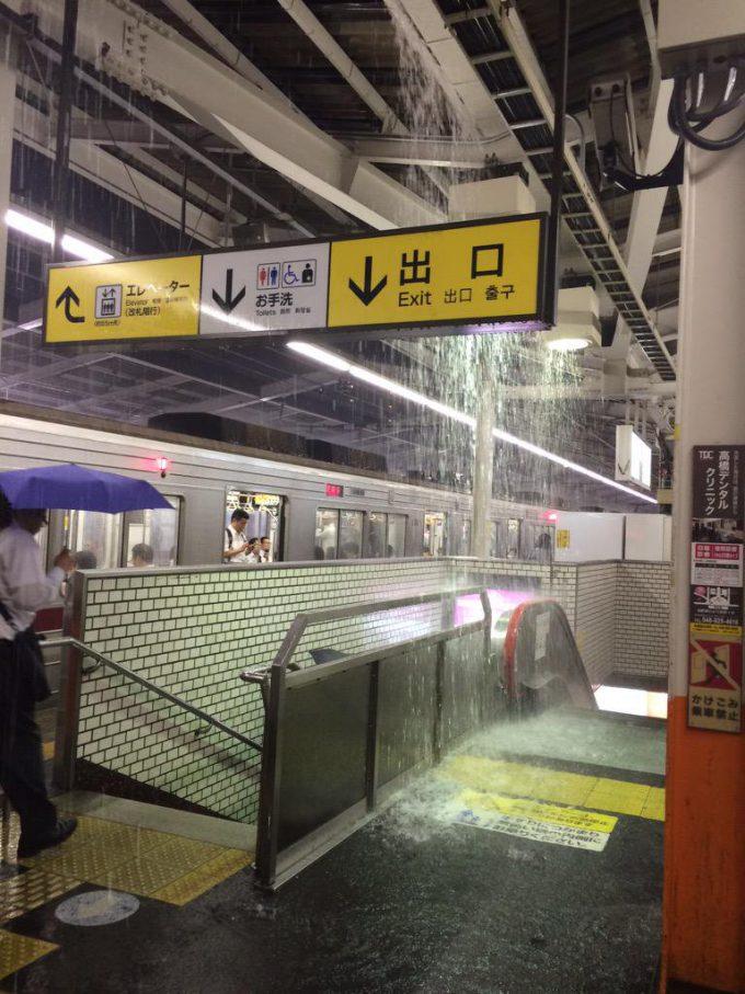 【台風で起きた衝撃の出来事画像】滝! ゲリラ豪雨の影響で草加駅ホームにシャワーのような雨が(笑)