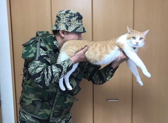 【猫おもしろ画像】ニャイフル! ライフルに見立てられた猫のなんともいえない表情(笑)