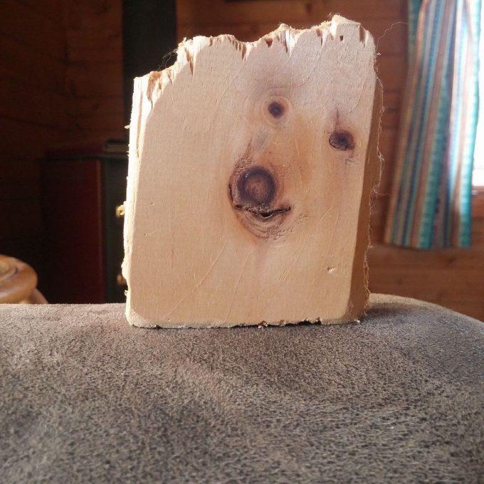 封印されしもの! 犬の顔にそっくりな木の木目がすごい(笑)