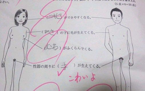 珍回答! 保健体育のテスト問題で、すごいところから手が生えると答える子ども(笑)