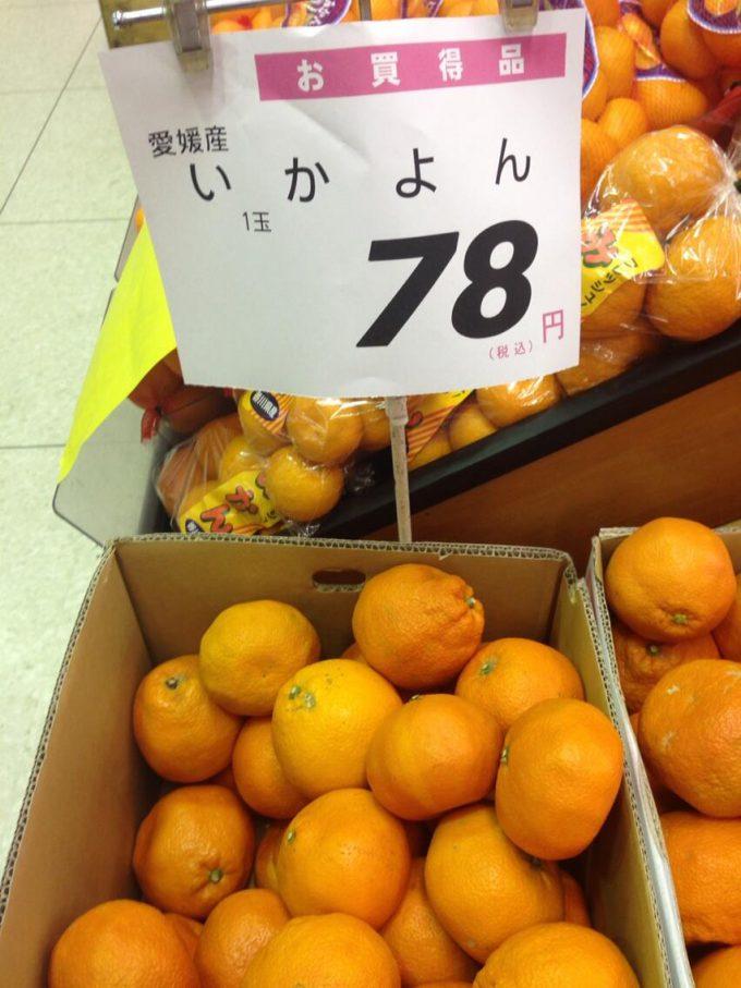 【スーパーのポップ誤字脱字・誤植おもしろ画像】お買い得! 近所のスーパーで売っていたいよかんの誤字ポップ(笑)