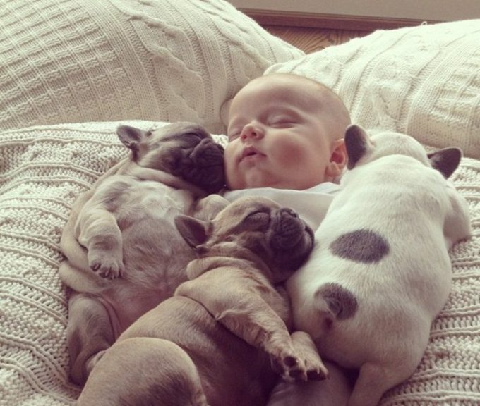 すやすや♪ 犬の赤ちゃんたちと一緒に寝る赤ちゃんに癒されます(笑)