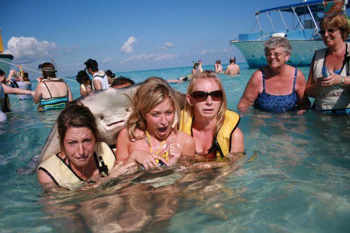 【海のアカエイにおびえる女性おもしろ画像】ケイマン諸島スティングレイシティのアカエイに怯える女性たち(笑)